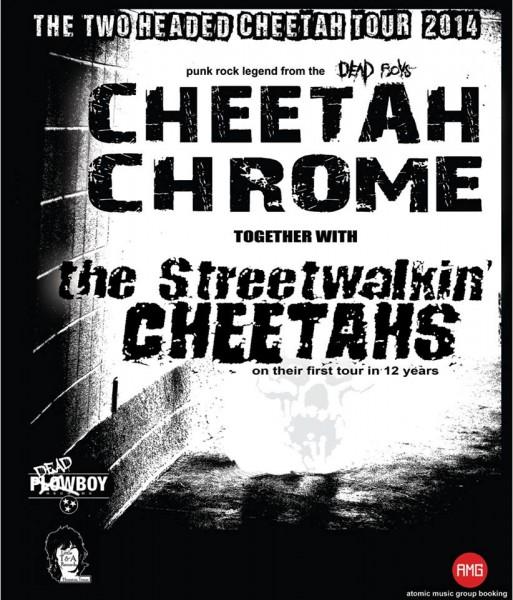 Cheetahs tour poster